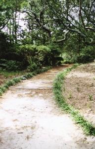 Garden3portrait