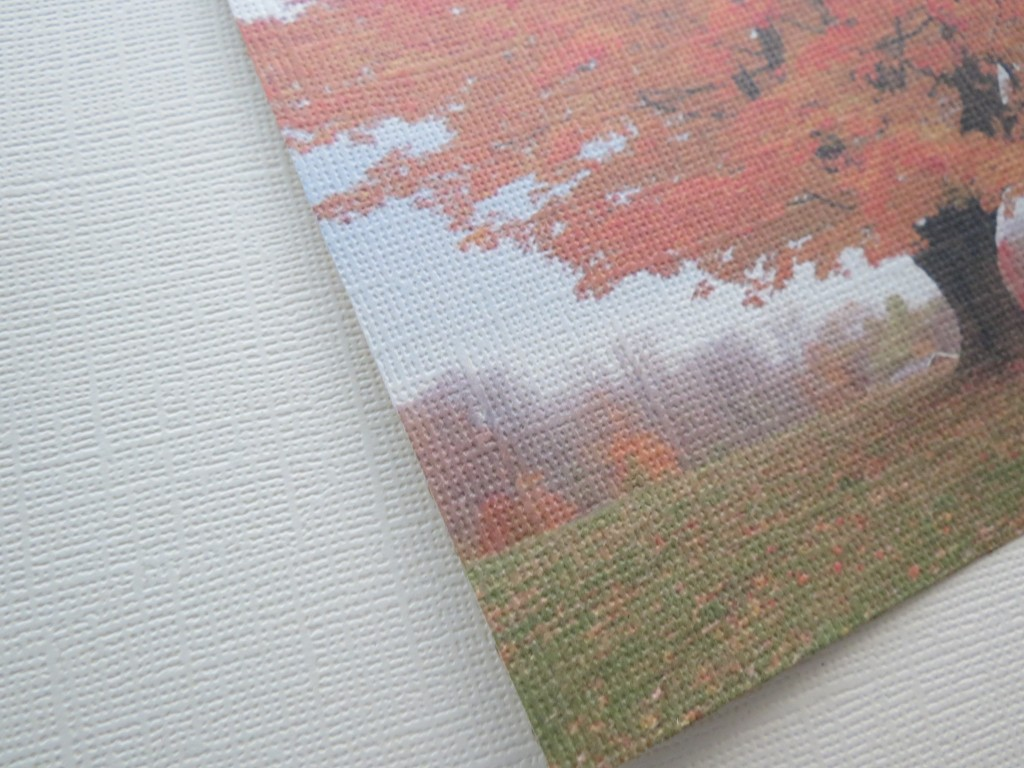 canvas cardstock and photo that has been printed on the canvas