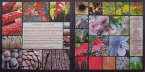 Fall Photo Tips: Scavenger Hunt layouts