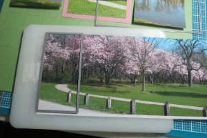 Quick Page Die Cutting a Panorama Photo