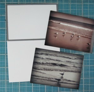 Summertime... and the Scrapping is Easy  using the 3x4 layering die to cut two photos printed on one 4x6