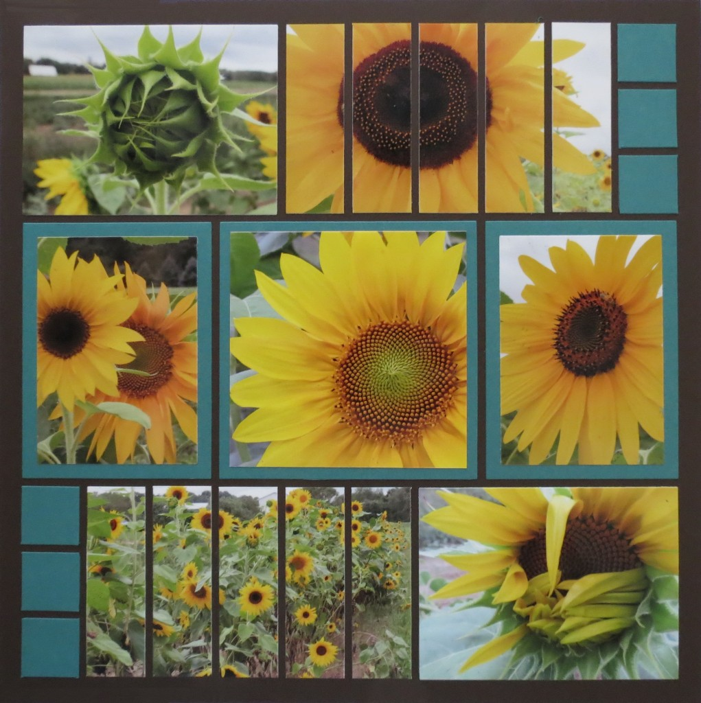 Sunflowers and Mosaic Strips page pattern #225