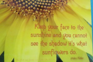 Sunflowers and Mosaic Strips Quote by Helen Keller