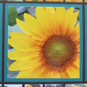Sunflowers and Mosaic Strips color inspiration photo