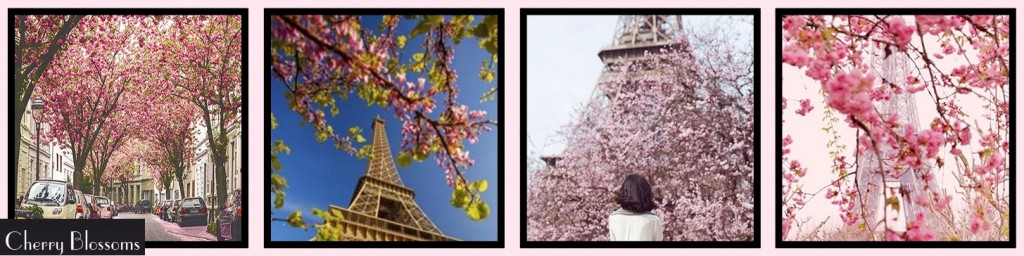 MM Inspiration: Paris in Spring CHERRY BLOSSOMS