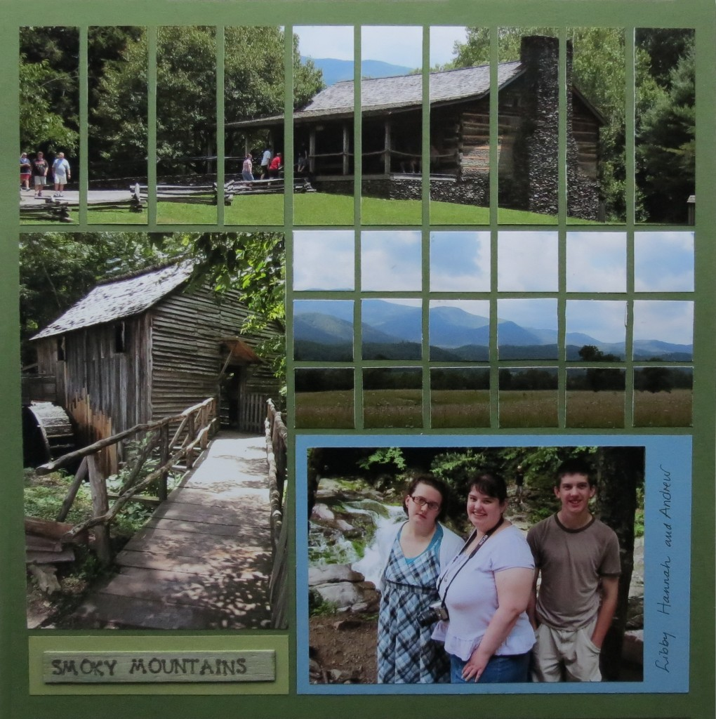 MM Panoramic Layouts Getting the Big Picture Pattern #251  the Strip Die