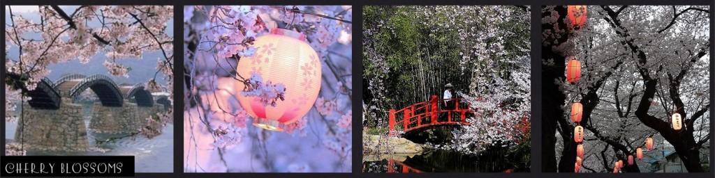 Nature: Sakura MM Inspiration Tokyo Cherry Blossoms