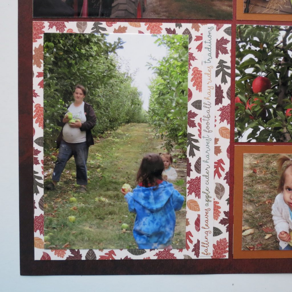 Mosaic Moments Acorn Border Dies